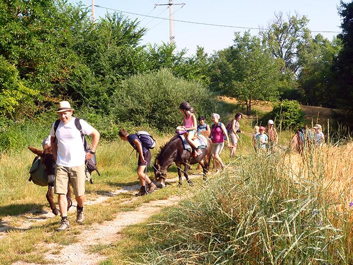 Randonnée dos d'âne en Haute Provence